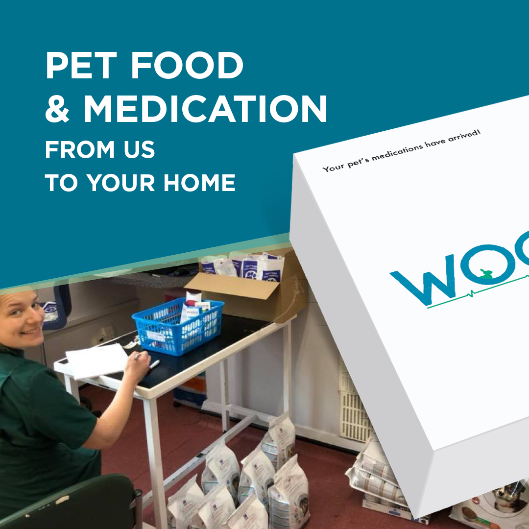 Pet Food and Pet Medicines: Home delivery to local pet owners in Woolton Village