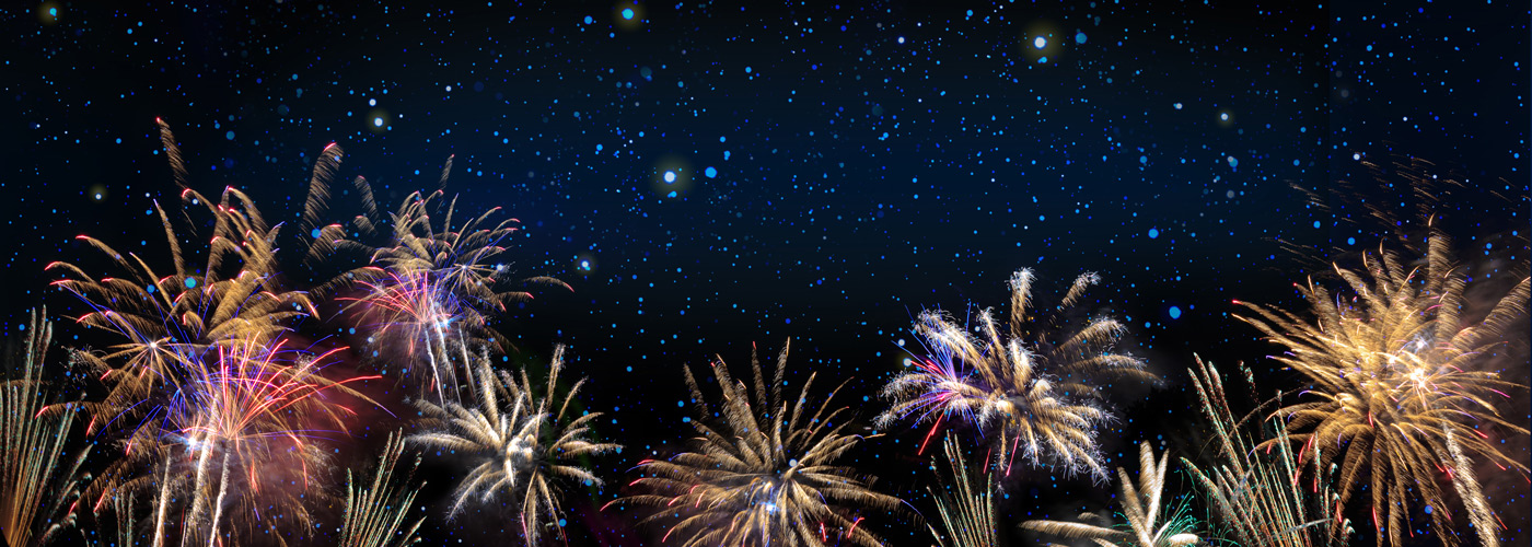 Pets and Fireworks | How To Help Pets Scared of Fireworks